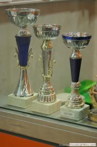 Les trophées du Club